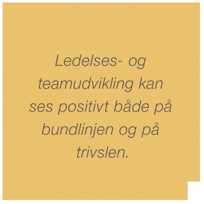 heckmann – Ledelesesudvikling og teamudvikling