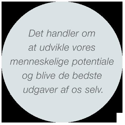 heckmann – Coaching, Erhverv